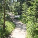 path at Harney Peak