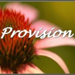 provision5b